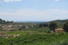 Preciosa Vista a la Huerta Valenciana