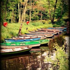 One day this will be the boats outside my backdoor and they will belong to my grandchildren! Around The World In 80 Days, Around The Worlds, Simple Boat, Float Your Boat, Love Boat, Small Boats, Wooden Boats, Outdoor Adventures, Water Crafts