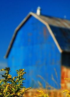 THIS BLUE MAKES MY EYES HURT!! BEAUTIFUL BARN!! LOVE!!!~~~~~