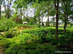 Northwind Perennial Farm Shade Garden