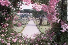 Rome's dreamlike Roseto Comunale (Municipal Rose Garden) in the Via di Valle Murale hosts a rose competition each May.