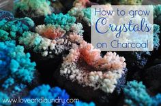 How to Grow Crystals on Charcoal, What a fun science project for kids! ok and parents too :)