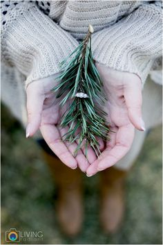While we know it's tough to take your engagement ring off for even a second — it's just so shiny! — play up holiday engagement vibes with an engagement photo of your ring and a sprig of spruce tree. | 10 Wonderful Winter Engagement Announcement Ideas