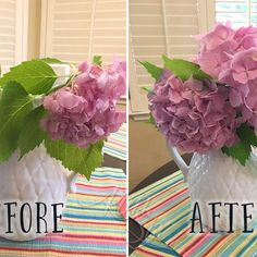 There is nothing more frustrating than cut flowers that wilt or droop too fast. and one of the WORST culprits for premature drooping are . Hydrangea Care, Hydrangea Not Blooming, Hydrangeas, Wine Bottle Gift, Do It Yourself Furniture, Glass Shower Doors, Cut Flowers, Indoor Garden, Floral Arrangements