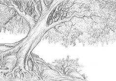 14 En Iyi Ağaç Ve Yol Görüntüsü Pencil Drawings Charcoal Ve Color