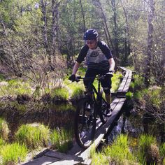 Riding a skinny over one of many boggy areas. Rider: Leo Ranta. Photo: Greg Heil