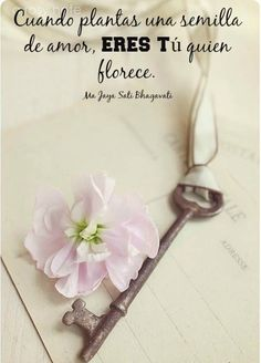 〽️Cuando plantas una semilla de amor...