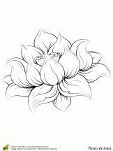 Coloriage Fleurs de Lotus sur Hugolescargot.com
