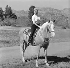 Bamboo Harvester and Connie Hines - Mr Ed and Carol Post  Animal Actor. Mister Ed, a Palomino horse officially named Bamboo Harvester, was a show and parade horse who was foaled in 1949 in El Monte, California. His parents were The Harvester (Sire), a Saddlebred owned by Edna and Jim Fagan; and Zetna, (Dam) who was sired by Antez, an Arabian imported from Poland.