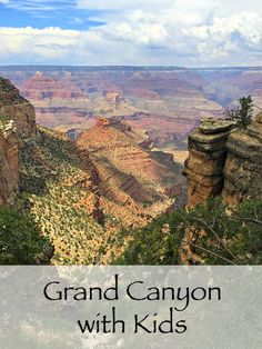 Grand Canyon with Kids ~ What to Know Before You Go!