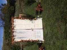 outdoor wedding...we set up antique doors...autumn decor...