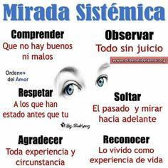 Mirada sistémica