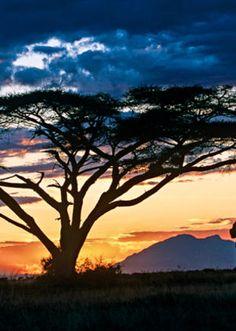 Breathtaking sunsets under African sky #CWAdventure #Safari #Africa #Kenya #Tour