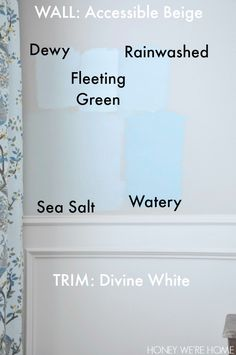 Honey We're Home: Choosing Paint for the Dining Room - Sherwin Williams Sea Salt ??