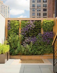 Sichtschutz zum Nachbarn? Ein vertikaler Garten ist kreativ und chic