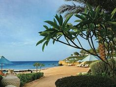 Sharm El Sheikh #Egypt