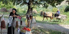 Rural scene in Georgia    #gruzja #georgia #bezdroza