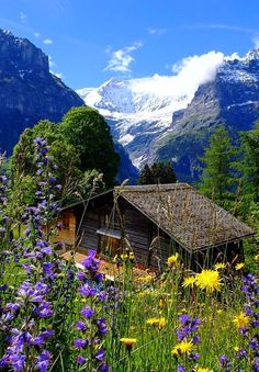 Cabin in the Mountains Beautiful Nature Wallpaper, Beautiful Landscapes, Great Places, Places To See, Amazing Places, Beautiful World, Beautiful Places, Getaway Cabins, Paradise On Earth