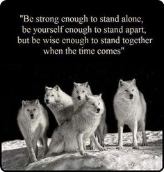 mistymorrning:  strength when standing together…