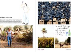Edible Selby Book Sneak Peak « the selby Wine Making, Sicily, Red Wine, Photo Wall, Cool Stuff, Gallery, Farming, Frame, Creative