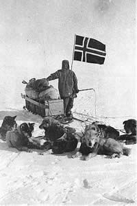 Amundsen and his dogs 12-14-1911 explorer / race to win !! R. Amundsen near the Pole with his dog team