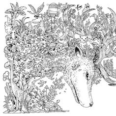 Animorphia: An Extreme Colouring and Search Challenge: Kerby Rosanes