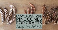 Pine cones collected outdoors can bring mold, mildew or bugs into your home. Learn how to prepare pine cones for crafts. No bleach. All-natural. Free!