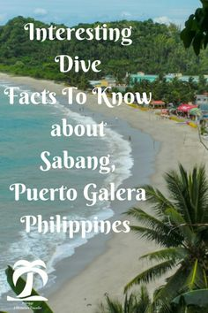 Interesting Dive Facts To Know About Sabang - 1AdventureTraveler | Dive Sabang, Puerto Galera, Philippines. One of the top 10 dive destinations in according to a dive magazine. Follow me on my diving journey | Puerto Galera | Philippines | Sabang | travel http://www.deepbluediving.org/trash-ocean/