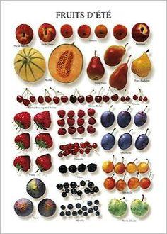 Fruits d'été Atelier Nouvelles Images