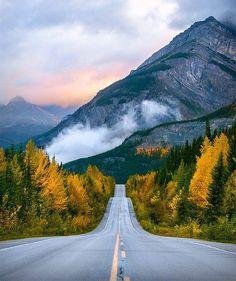 The Icefields Parkway(Banff & Jasper National Park) | Travel Alberta Jenn Explores