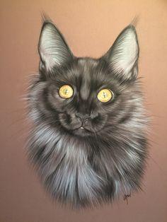Chats Image, Warrior Cats Art, Cat Sketch, Maine Coon Cats, Color Pencil Art, Cat Colors, Pastel Art, Cat Tattoo, Cat Drawing