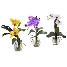 Purple Yellow Mixed Orchid w/Cube Arrangements (Set of times the beauty, and three times your decorating options. This wonderful set of mixed Orchids perfectly capture everything that makes the Orchid so sought-after, with the added bonus of Faux Flowers, Colorful Flowers, Silk Flowers, Beautiful Flowers, Yellow Orchid, Orchid Color, Purple Yellow, Color Yellow, Colour
