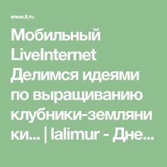 Мобильный LiveInternet Делимся идеями по выращиванию клубники-земляники... | lalimur - Дневник lalimur (Марина Манукова) |