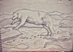 Polar Leap, pencil drawing on watercolor paper I really love Polar Bears