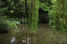 Das schöne Pashley Manor, ein kleiner Privatgarten in East Sussex, Südengland, habe ich letztes Jahr besucht. Was mir besonders gefallen hat, war die gelungene Verbindung zwischen Garten und Skulpturen. Pashley Manor war eigentlich ein Spontanbesuch letztes Jahr auf meiner kleinen Gartenreise durch Südengland. Auf dem Weg zu dem berühmten Great Dixter Garten, sah ich nun …
