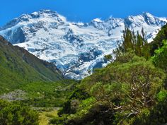 Aoraki/Mount Cook national park New Zealand [OC][4608x3456] ChickenMan03 http://ift.tt/2nlr1Bt March 22 2017 at 01:15AMon reddit.com/r/ EarthPorn