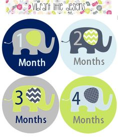 Monthly Baby Stickers Boy, Monthly Onesie Stickers, Monthly Milestone Stickers, Baby Shower #54