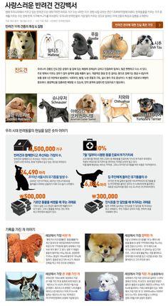 infographics 사랑스러운 반려견 건강백서