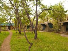 Investment For Sale in Livingstone Display Property, Commercial Property For Sale, Livingstone, Victoria Falls, Heritage Site, Lodges, The Expanse, Woodland, Investing