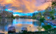 Idlewild Park, Reno, Nevada.  Our first kiss was in the rose garden.  :)