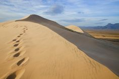 Kelso Dunes- been there, done that :)  Mojave desert, california