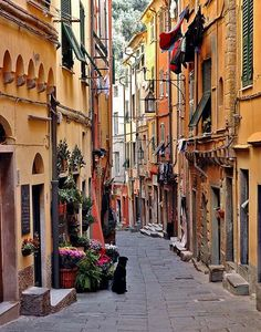 Narrow Street, Portovenere, Liguria, Italy photo via evys Places Around The World, Oh The Places You'll Go, Places To Travel, Around The Worlds, Wonderful Places, Beautiful Places, Sestri Levante, Genoa Italy, Italy Travel