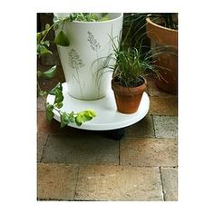 LANTLIV Plant stand on wheels - IKEA--8.00