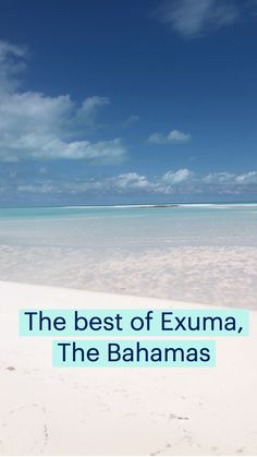 Exuma Island, Pig Island, Great Exuma, Swimming Pigs, Best All Inclusive Resorts, Fun Places To Go, Hidden Beach, Beach Stuff, Travel Essentials