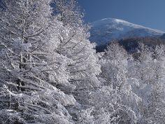 taken by a Pentax camera Mount Everest, City Photo, Mountains, Pentax, Photography, Travel, Outdoor, Garden, Fotografie