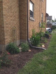 South  side flower bed one year later