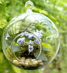 TERRARIUM  Woodland globe terrarium with African by dirtcouture
