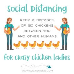 Keep a distance of six chickens between you and other humans. 💘 Be safe out there everyone!