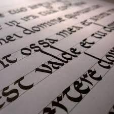 Резултат с изображение за carolingian minuscule aga silva