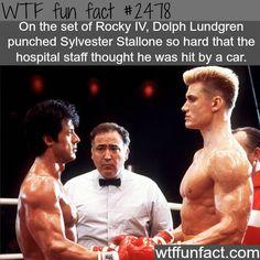 Dolph Lundgren VS Sylvester Stallone -WTF...